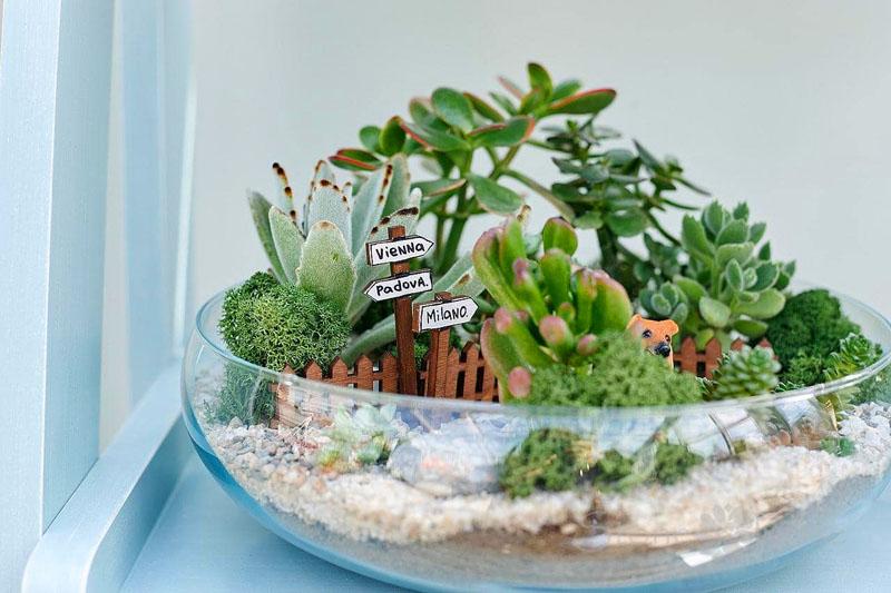Чтобы растения в замкнутом пространстве не теряли своего вида, придётся их регулярно обрезать и прищипывать, ограничивая рост