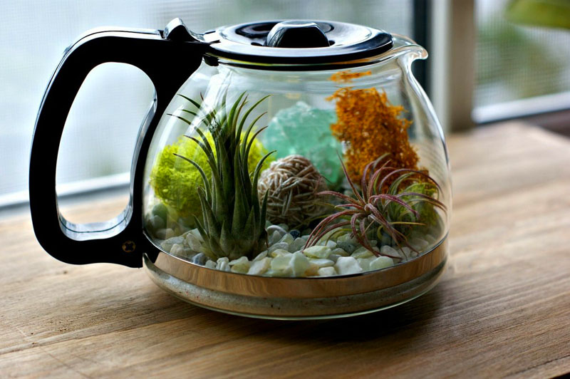 Композиция в чайнике – отличный вариант для украшения кухонного стола