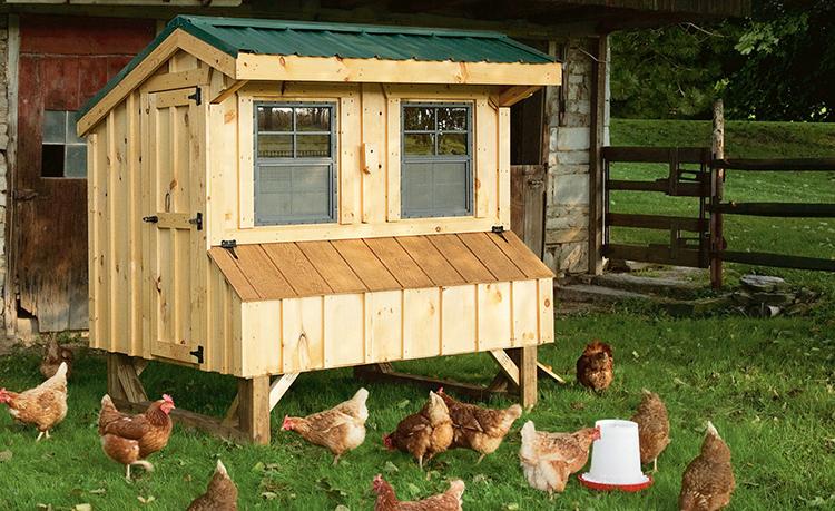 Постройки для домашних животных лучше располагать с подветренной стороны, как и место нахождения компоста или уличного туалетаФОТО: 1kyra.ru