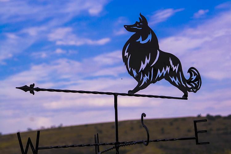 Флюгер – это не только украшение на крышеФОТО: static.orgpage.ru