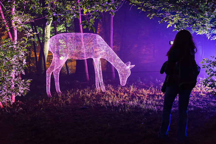 Популярны светящиеся в темноте садовые фигурыФОТО: gazeta-medvedkovo-juzhnoe.ru