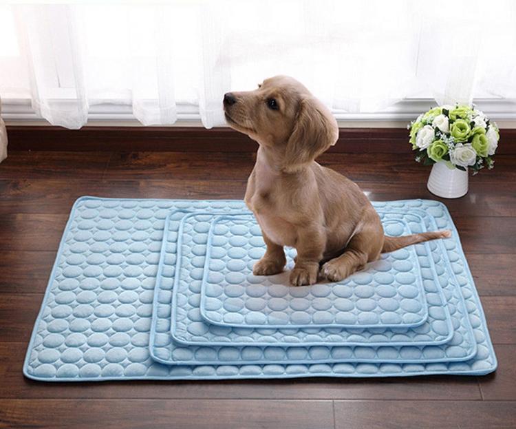Определение места для пса – это серьёзный вопрос воспитания. Собака должна подчиняться этому правилу. Только так она поймёт, кто в доме хозяинФОТО: good2items.com