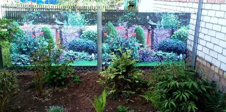 А если забор из профнастила и в солнечные дни сильно разогревается, то сетка в этом случае послужит защитой для растенийФОТО: i.mycdn.me