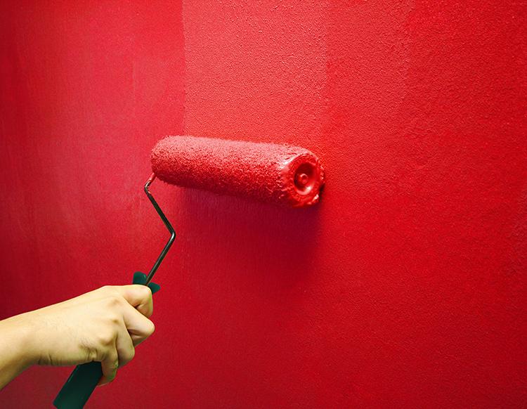 Покраска стен может выполняться водоэмульсионной краскойФОТО: janovic.com