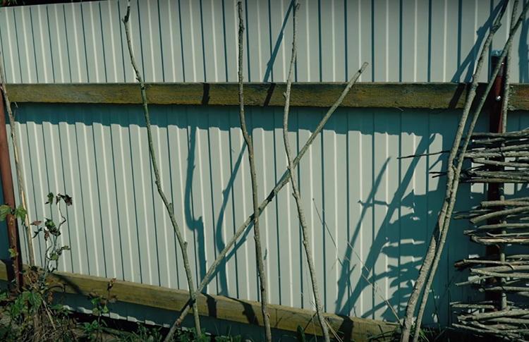 Вот и во дворе Анастасии оказался такой скучный забор из профнастила. Соседи повернули его к себе лицевой стороной, а нашему автору осталось лишь каждый день смотреть на некрашеные кривые доски с обратной стороны
