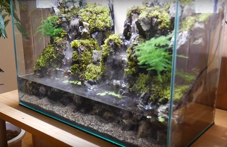 Акватеррариум готов: перед вами живой пейзаж с водопадом, лёгкой дымкой и живой зеленью