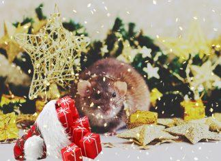 Декор дома на Новый год: чтобы мышь принесла удачу