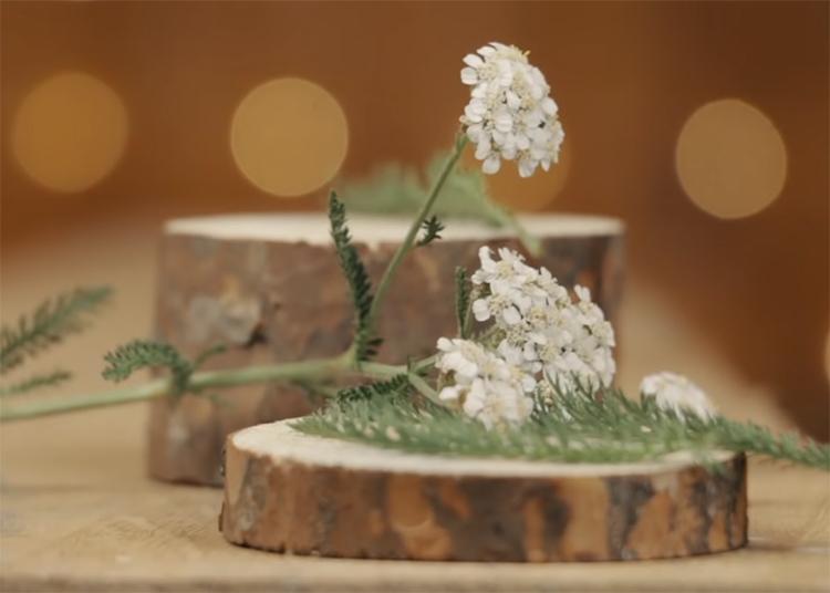 Для художественного оформления изделия вам потребуются образцы трав и цветов. Подберите то, что вам нравится. Желательно высушить растения, но можно работать и со свежими. Только необходимо понимать, что впоследствии они изменят свой вид