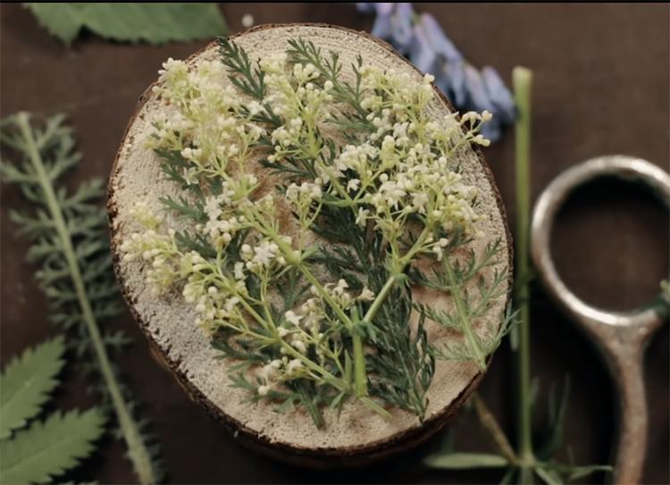 Выложите свой «гербарий» на крышке так, чтобы получилась продуманная композиция. Используйте полевые травы, лепестки цветов. Можно добавить в композицию бусины или монетки и мелкие камни