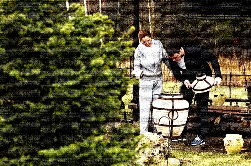Дивный домик Евгения Дятлова: идеальное место для самоизоляции в период пандемии