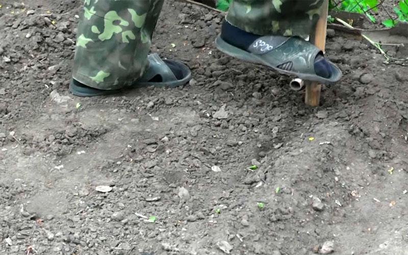 Вот так, запросто, делаются лунки, в которые будут высажены ростки