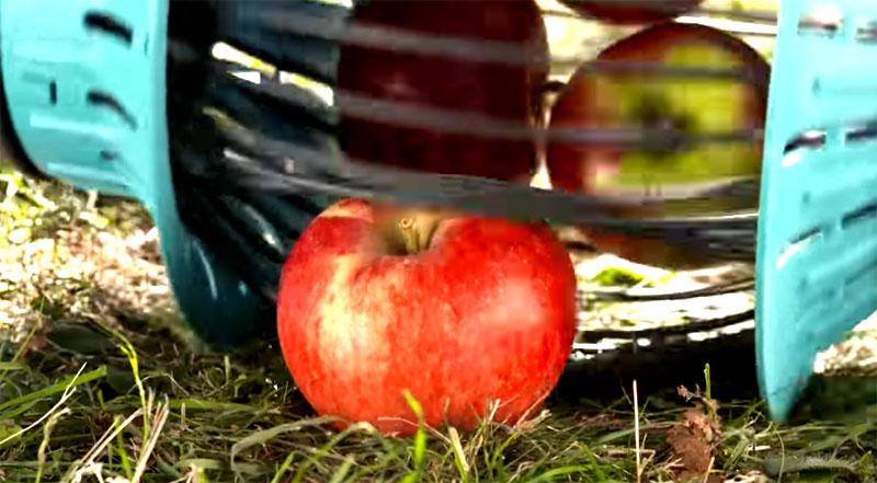 Плод раздвигает эластичные стержни, проваливается в приёмник, после чего пластик принимает первоначальное положение