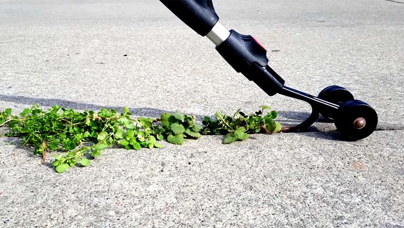Вот так выглядит помощник дачника, легко справляющийся с сорняками