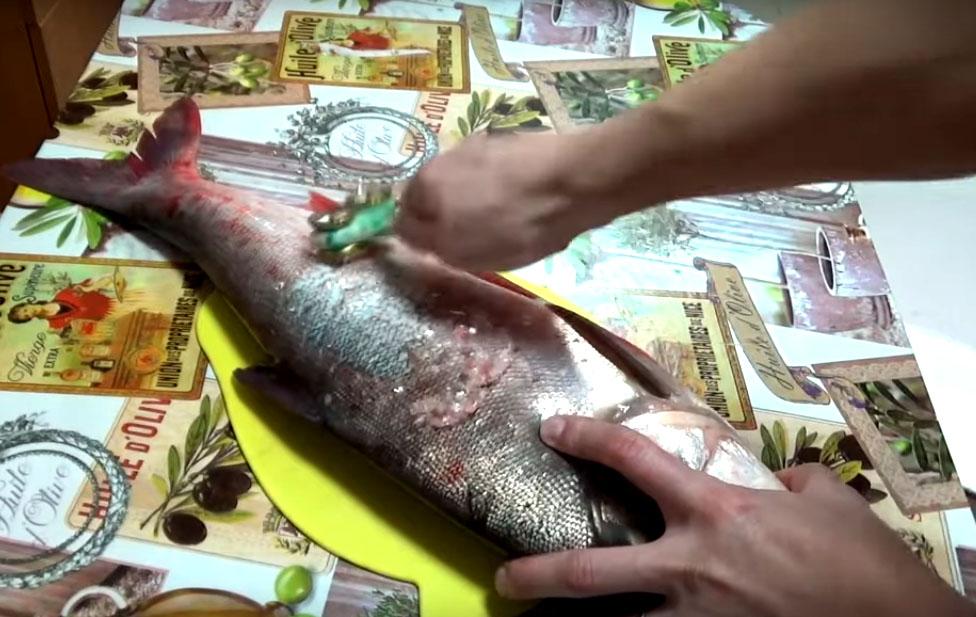 Использовать эту рыбочистку очень просто: проводите ею против направления роста чешуи, и вы легко почистите рыбу