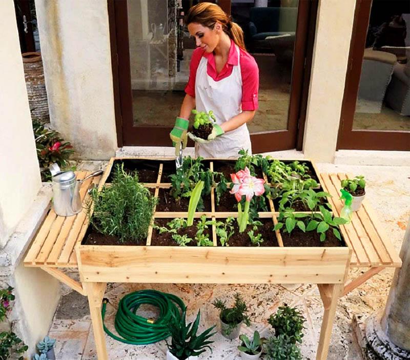 Салатную зелень можно посадить вот в такой высокий стол-ящик. Ухаживать за ней будет настоящим удовольствием, такой стол можно поставить в любом солнечном месте