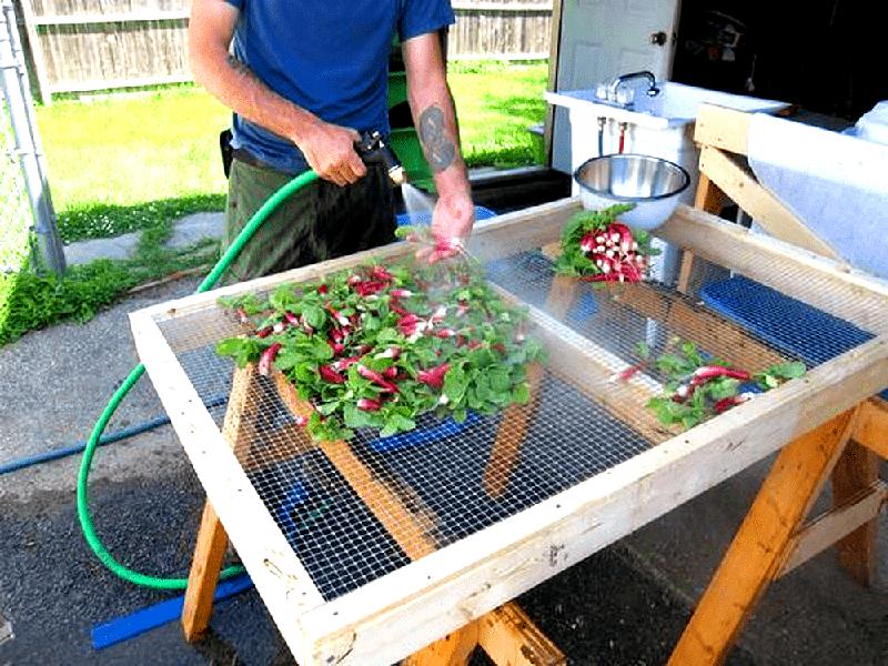 Отличная идея - использовать стол с сеткой вместо столешницы. Вода и грязь быстро стекут с плодов, и на этой же сетке можно будет их подсушить