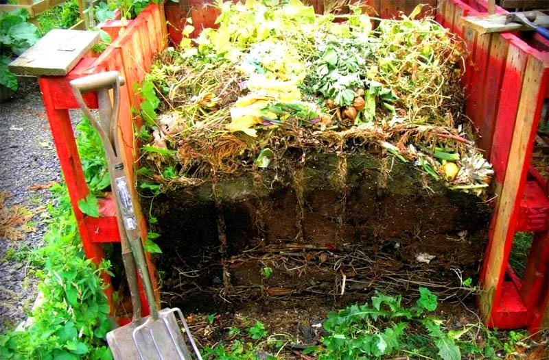 И снова вас выручат обычные деревянные поддоны, соберите из них ограждение для компоста и заполняйте пищевыми отходами и остаткам растений
