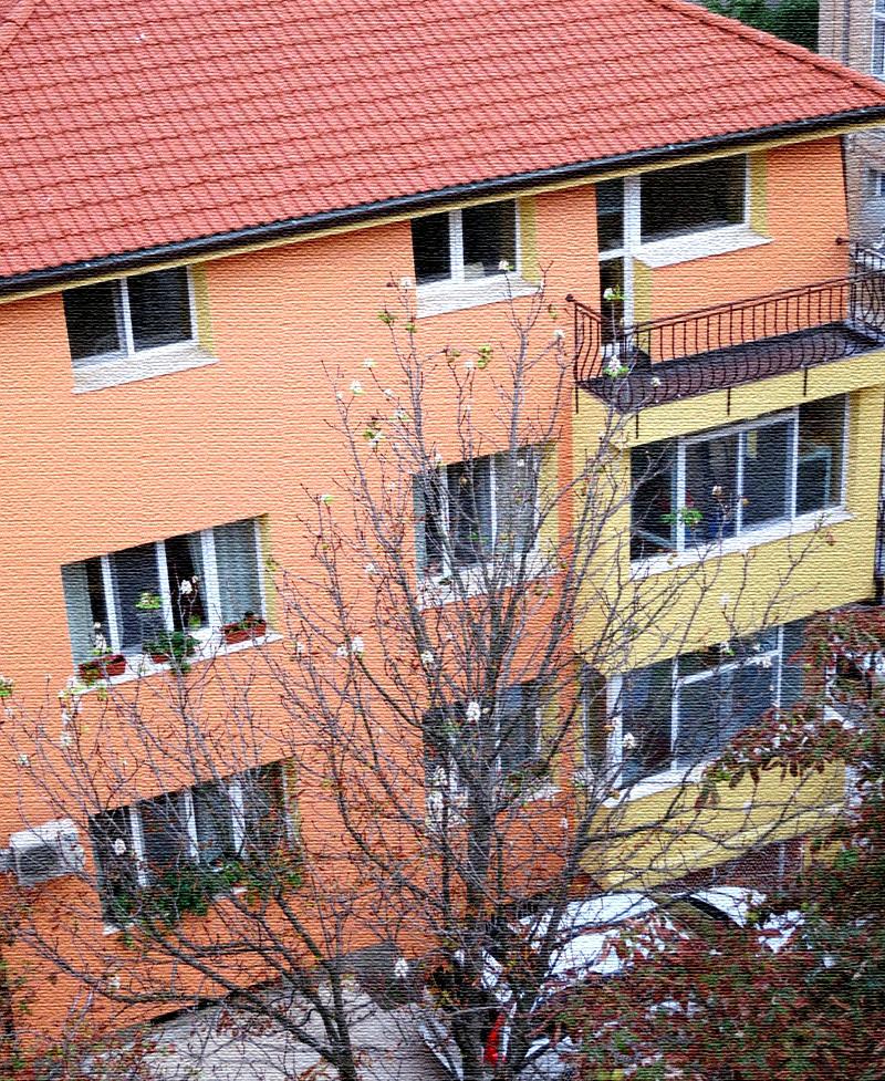 Скромно до неприличия: дома и квартиры Юрия Лозы