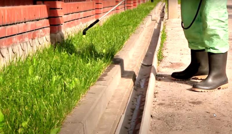 Инсектициды распыляют на грунт и вертикальные поверхности на высоту до полутора метров