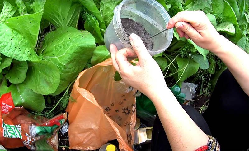 Сезон майских шашлыков тоже принесёт вам полезное для защиты растений средство. Не выбрасывайте древесную золу из мангала. Собирайте её и сохраняйте в сухом виде. Она послужит для ваших посадок удобрением и одновременно – защитой. Посыпьте золу барьером вокруг растений и на листья. Слизни не станут покушаться на побеги в этих отходах огня. Можно добавить в золу немного пищевой соды, примерно две столовые ложки на литровую банку порошка