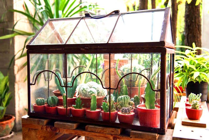 По возможности используйте естественный источник света, но если в квартире и на балконе его недостаточно, то без дополнительных ламп не обойтись