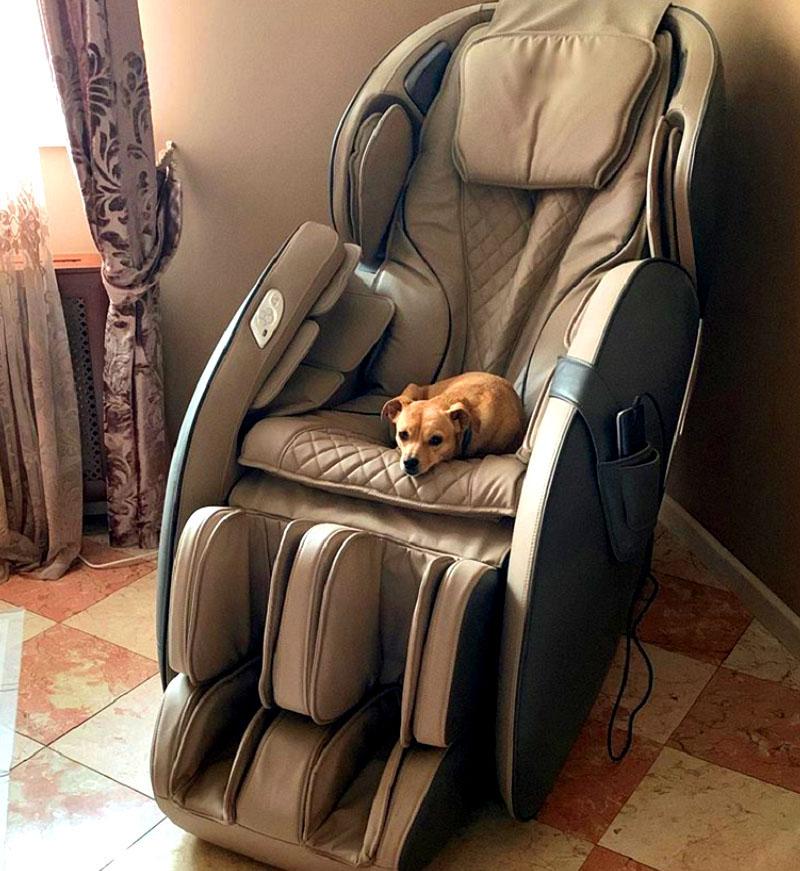 Там же разместили роскошное массажное кресло, сидя в котором, Ольга может наблюдать за питомцами, резвящимися на свежем воздухе