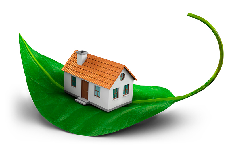 В чем схожи газобетон и дерево: сравнение характеристик