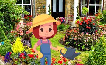 Как разбить цветник на маленьком дачном участке