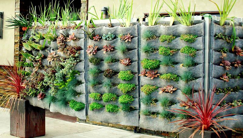 Используйте необычные фитомодули для стены. Это кармашки, в которые вы можете посадить небольшие растения и травы
