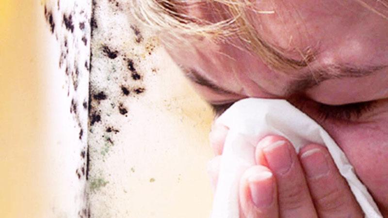 При частых заболеваниях следует убедиться в отсутствии плесени