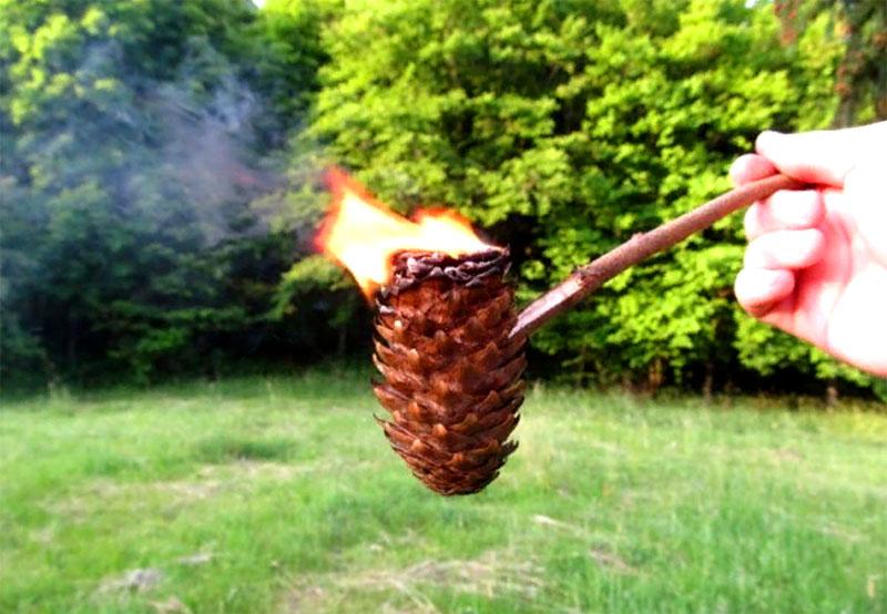 Нужно поджечь шишку, потом задуть пламя и дымящей шишкой окурить помещение. Понятно, что со всеми мерами предосторожности
