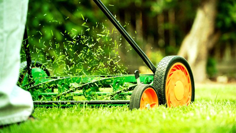 Подстригая воскресным утром газон, вы даже не разбудите соседей