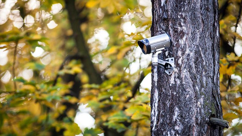 Минус таких камер − в неважном разрешении, но в большинстве случаев особых подробностей и не требуется. Такую же роль могут выполнять и обычные автомобильные регистраторы