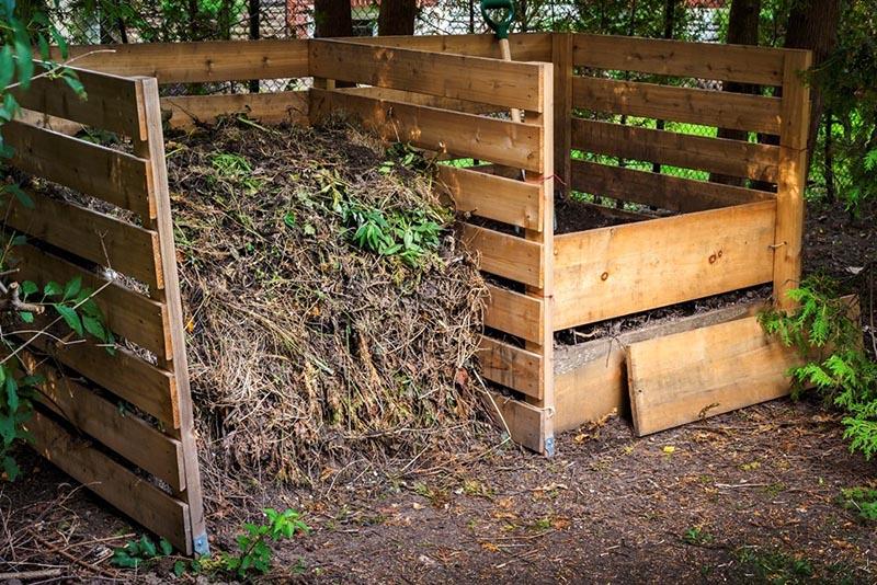 В хорошем компосте, да ещё с червями и биобактериями для разложения вы получите действительно полезные вещества