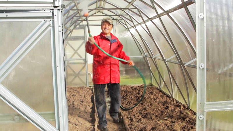 Все эти составы никак не повлияют на урожайность грунта, так что смело распыляйте их внутри теплицы