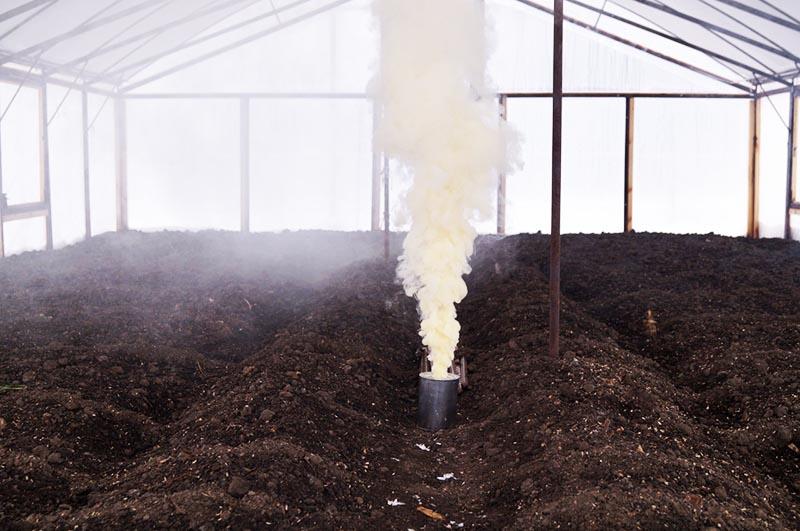 Чтобы убить личинки медведки и других вредителей, можно полить землю кипятком или использовать серную шашку