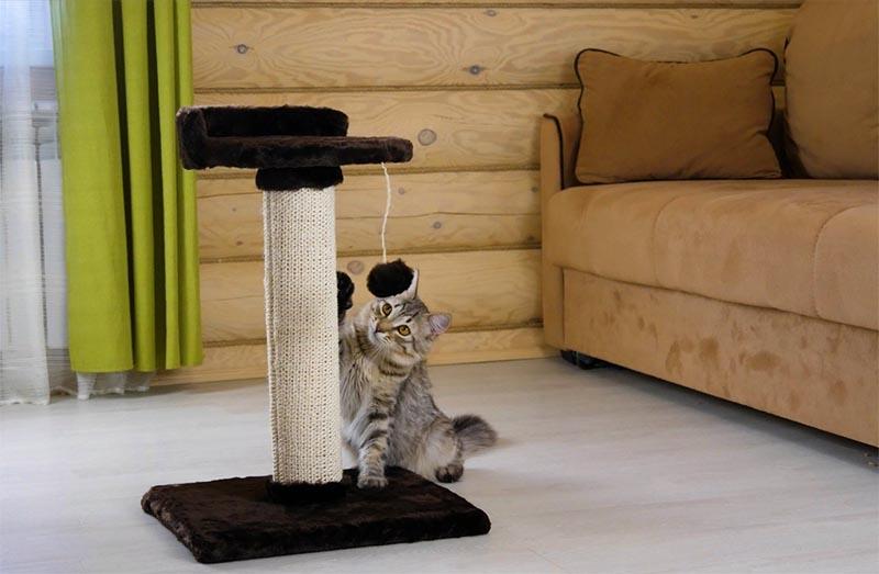 Петли ковролина отлично цепляются за коготки, и драть такую когтеточку для кота – одно удовольствие