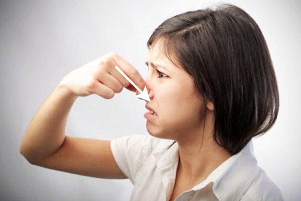 Консервация сантехники: предупреждение неприятного запаха