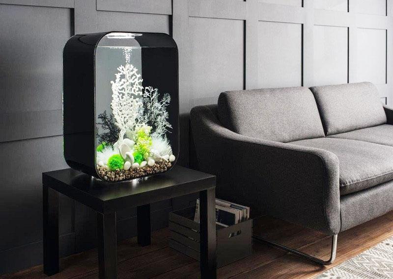 Примеры аквариумов разной формы