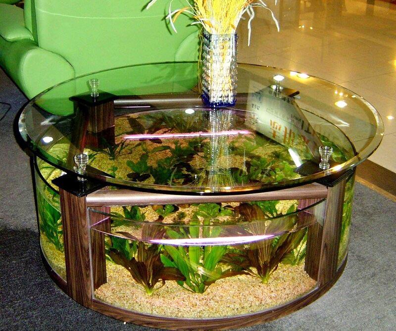 Небольшой стеклянный бассейн может быть журнальным столиком