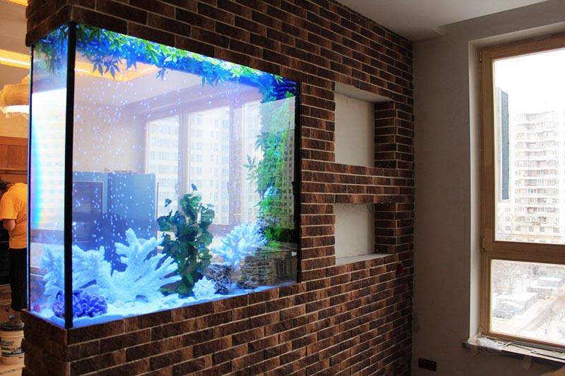 С помощью аквариума-перегородки можно зонировать помещение