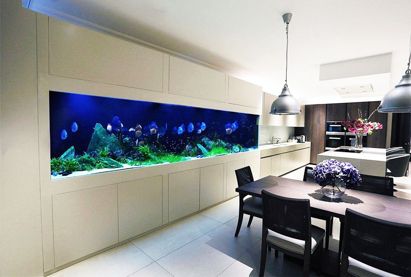 Можно встроить стеклянный резервуар в мебель