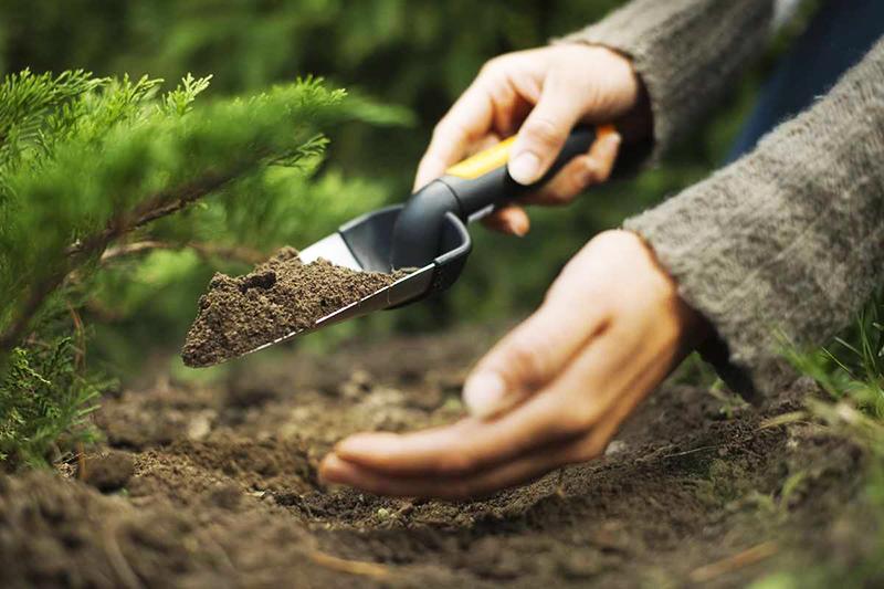 Для больных растений иногда хорошим решением бывает использование подсыпок из той природной зоны, где растут их собратья