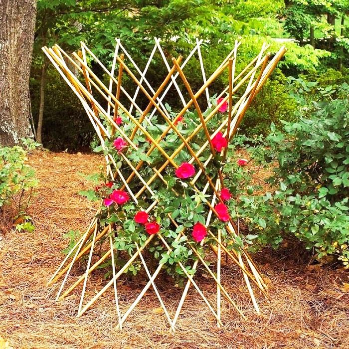 Самые креативные опоры для огурцов и вьющихся цветов