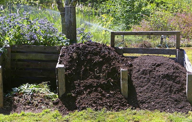 Если в течение лета послойно пересыпать ими отходы в компосте, процесс перепревания пойдёт быстрее, а сам компост потом порадует вас лёгкой рыхлой структурой