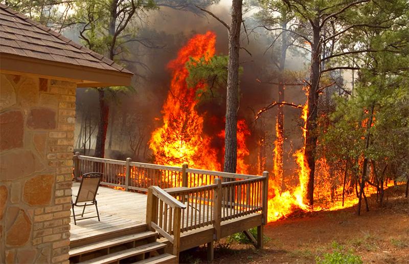Именно высокорослые деревья на границе участка зачастую являются дополнительным источником распространения пожара