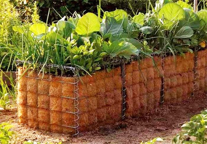 Такие конструкции хоть и выглядят необычно, но зато обеспечивают отличную аэрацию почвы и препятствуют загниванию корней на участках, где скапливается вода