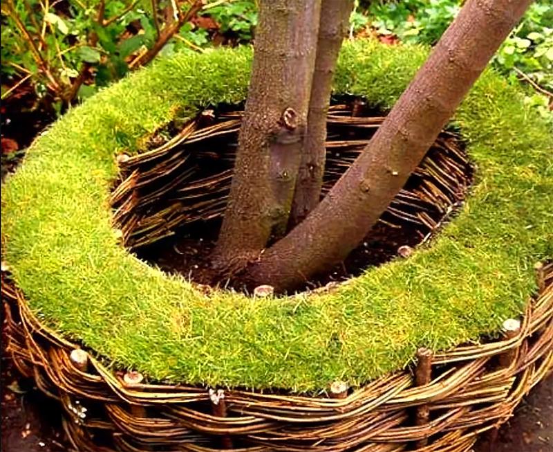 Посмотрите, как интересно выглядит плетёная корзина. А если в неё в качестве оформления добавить немного газонной травы, получится весьма нетривиально