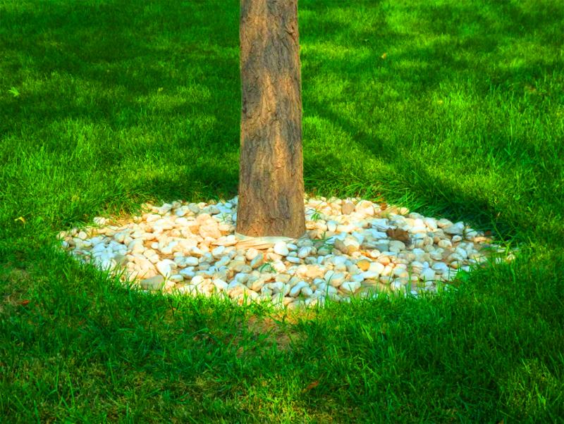 Мелкая галька выглядит неплохо, но помните, что это всё-таки камни, они имеют немалый вес и плотно закрывают землю от влаги