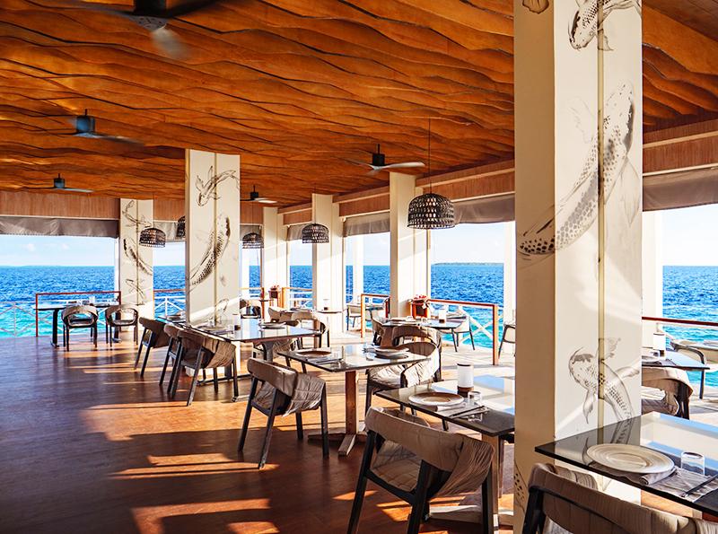 Открытая обеденная зона обставлена по высшему разряду – разрабатывая дизайн, профессионалы постарались передать дух роскоши и моря. В этом зале можно увидеть сразу две необычные фишки – текстурный потолок и изображения рыб на белых столбах